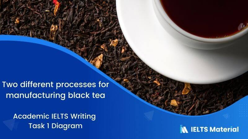 IELTS Academic Writing Task 1 Topic 29: Two different processes for manufacturing black tea – Diagram